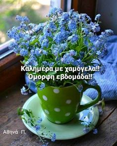 Good Morning Good Night, Wonderful Images, Wonders Of The World, The Good Place, Cool Photos, Herbs, Colours, In This Moment, My Favorite Things