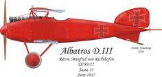 D.789/17 - Jasta 11 - Rittm. Manfred von Richthofen - June 1917 / The German Lesson