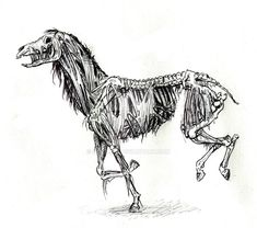 Zombie Horse sketch by Dewilish