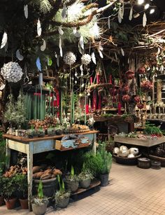 Bang & Thy │ Eksklusiv blomsterkunst i hjetet af Århus ⚶ Florist Shop Interior, Flower Shop Interiors, Flower Shop Design, Pine Design, Craft Stalls, Beautiful Flower Arrangements, Christmas Mantels, Garden Shop, Flower Market