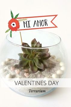 VALENTINES DAY Terrarium Your Canvas LANDSCAPE Sprinkle pink glitter Add 1 artificial succulent Plus a valentine's party flag View tutorial at http://kraftmint.com by @ursularosien