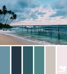 { color tropic } image via: @arasacud