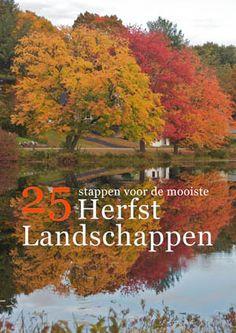 Ebook Herfst Herfstfotografie Herfstlandschappen