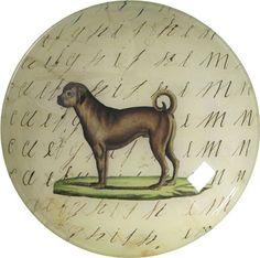 bowl, with pug