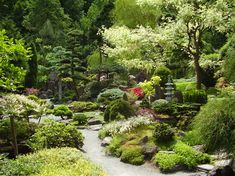 Jarków - Ogród japoński. Atrakcje turystyczne Jarkowa. Ciekawe miejsca Jarkowa