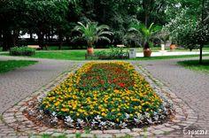 gliwice park chopina - Szukaj w Google