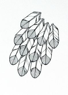 stylised feathers illustration - 'hope' - feathers drawing - modern feathers art, hand drawn in black and white.