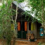 Big Game Camp in Yala National Park - bit pricey but awesome experience to stay overnight in the park in a 4-star camp site!