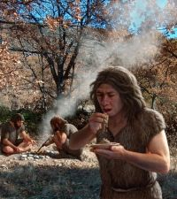 Neanderthals have long been viewed as meat-eaters. The vision of them as inflexible carnivores has even been used to suggest that they went extinct around 25,000 years ago as a result of food scarcity, whereas omnivorous humans were able to survive. But evidence is mounting that plants were important to Neanderthal diets — and now a study reveals that those plants were roasted, and may have been used medicinally.