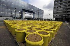 L'installation végétale de l'artiste autrichien Lois Weinberger, sur le parvis sud de la gare de Rennes.