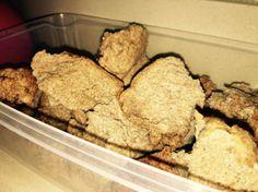 Bread machine bread maker   sourdoughmovement.com