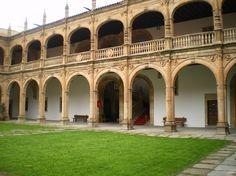 colegio de los irlandeses salamanca   El Colegio de Fonseca , también conocido con el nombre de Colegio de ...