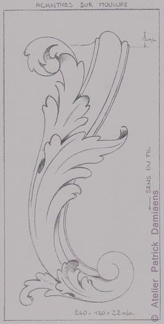ORNAMENTAL WOODCARVER Patrick Damiaens: THE ACANTHUS LEAF   ACANTHUS ORNAMENT   CARVING A AKANTHOS LEAF
