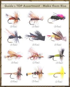 complex twist bugger - the 5 best fly tying blogs you should be, Fly Fishing Bait