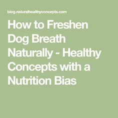 How to Freshen Dog Breath Naturally - Healthy Concepts with a Nutrition Bias