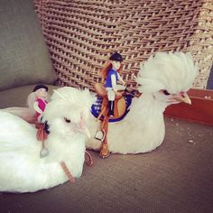 glamour chicks
