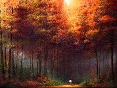 melodia das florestas - corciolli