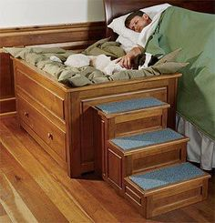 Now, this is a cool way to have your dog sleep next to you with their own dog bed and stairs with it!