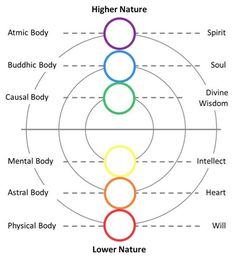 Spirit Descends Into Your Bodies | Pamela Hope DeLuca-Price | LinkedIn.- For centuries, for millennia, men have been studying the psychic world, trying to discover more about their inner self and what motivates its actions. To aid them, they divided man into different sections.