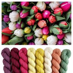 Color inspiration for baby blanket Dyeing Yarn, Color Inspiration, Crochet Hooks, Tulips, Blanket, Mini, Baby, Crochet, Blankets