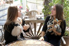 Our two friends enjoying the day out with their EZ Daisy #Collars.  Get yours for $25 today at http://kck.st/1hjg4FH