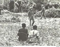 Suspected Viet Cong Guerrillas, tied up in the foreground as ARVN (Army Republic of Viet Nam) soldiers search a sugar mill for hidden weapons. ~ Vietnam War