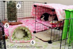A tour of our guinea pigs' current C&C fleece cage setup. Includes links to buy or make pictured cage accessories. Diy Guinea Pig Cage, Guinea Pig House, Cute Guinea Pigs, Fleece Crafts, Fleece Projects, Sewing Projects, Sewing Ideas, Sewing Patterns, Diy Projects