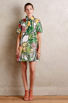 """Botanist shirtdress by Jena Theo ($228) - style no. 4130354861523. 00P - petite falls 32.5"""" from shoulder. Polyester. Side pockets. Pullover styling. Machine wash. Online only."""