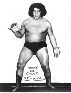 Andre the Giant-