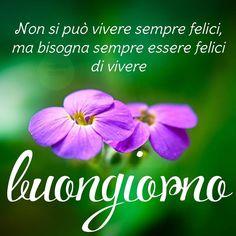 Immagini buongiorno sempre aggiornate Reggio Children, My Favorite Things, Anna, Biscotti, Phrases In Italian, Happy Day, Pictures, Universe, Bonjour