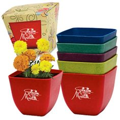 Bamboo Planters - Custom printed with your logo or message!  Live support & fast shipping.  Shop now!