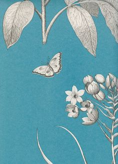 Etchings & Roses Wallpaper Black and pearlised white floral design on a teal blue background
