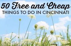 Looking for something free (or cheap) to do this summer in Cincinnati? We've got you covered with this list of 50 free and cheap things to do in Cincinnati for the summer of Perfect for Staycation ideas too! Cheap Things To Do, Stuff To Do, Free Things, Short Trip, Summer Fun, Summer 2014, Cheap Travel, Staycation, Weekend Getaways