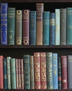 Upscale Vintage Cloth collection, Books by the Foot available by color. Books To Buy, I Love Books, Books To Read, Amazing Books, Classic Collection, Book Collection, Book Aesthetic, World Of Books, Books For Teens