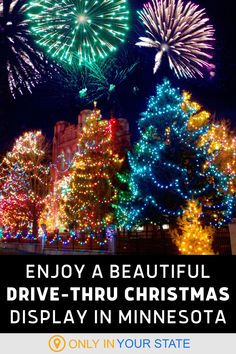 Enjoy a beautiful drive-thru Christmas lights display in Georgia! Make your holidays merry and bright, and be sure to bring the family on this adventure. Winter Fun, Winter Travel, Holiday Travel, Holiday Fun, Christmas Light Displays, Holiday Lights, Christmas Lights, Local Attractions, Holiday Traditions