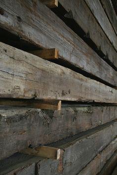 hout Wood Walls, Wood Species, Design, Seeds, Wood Wall, Tree Wall