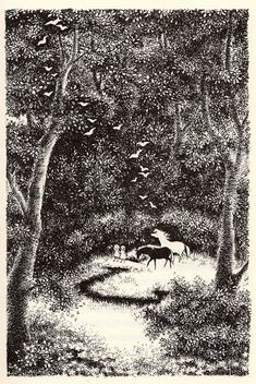 Black And White Drawing, White Art, Ink Illustrations, Children's Book Illustration, Interesting Drawings, Research Images, Illustrators, Fairy Tales, Scenery