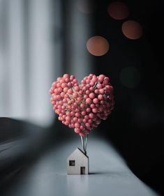 Home is where the heart is . Home is where the heart is .