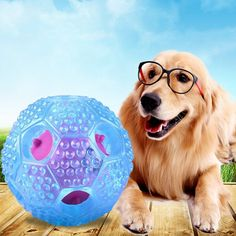 Yeam Dog IQ Treat Ball Interactive Nontoxic Themoplastic Rubber Dog Chew Toys -- Click image to review more details. (This is an affiliate link)