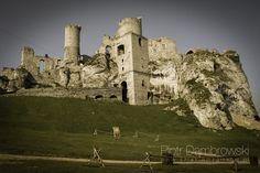 Zamek Ogrodzieniec – ruiny zamku leżącego na Jurze Krakowsko-Częstochowskiej, wybudowanego w systemie tzw. Orlich Gniazd, we wsi Podzamcze w województwie śląskim, w powiecie zawierciańskim, około 2 km na wschód od Ogrodzieńca. Zamek został wybudowany w XIV-XV w. przez ród Włodków Sulimczyków.  Zamek leży na najwyższym wzniesieniu Jury Krakowsko-Częstochowskiej – Górze Zamkowej wznoszącej się na 515,5 m n.p.m. Ruiny leżą na turystycznym Szlaku Orlich Gniazd; są udostępnione do zwiedzania.