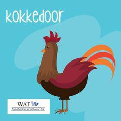 Afrikaans, Classroom Decor, South Africa, Van, Words, Vans, Horse, Vans Outfit