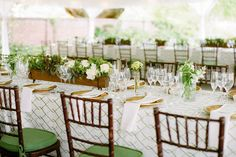 Crisp white and green apple with gold accents