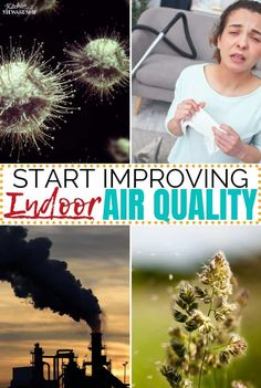 Dust, pet dander, VOCs, germs - From allergies to illness, indoor pollution can harm our health. Start improving indoor air quality with an air purifier. Health Remedies, Home Remedies, Real Food Recipes, Vegan Recipes, Cooking Recipes, Pet Dander, Health And Nutrition, Health And Wellness, Family Meals