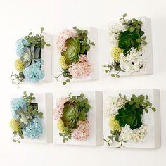 3D creativo Pastoral plantas suculentas marco de fotos de madera decoración de la pared de la sede artificial flores decoración del hogar decoración salón