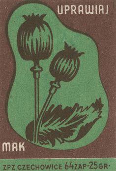 Polish matchbox label via Jane McDevitt 17 Vintage Graphic Design, Graphic Design Illustration, Art Deco Posters, Vintage Posters, Polish Posters, Cactus Drawing, Matchbox Art, Illustrations And Posters, Vintage Illustrations