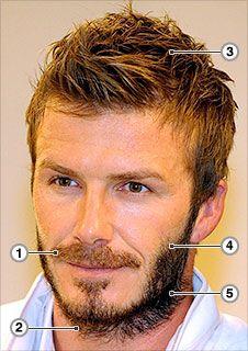 Big beardy style icons