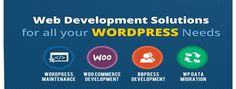 Web Development Services are Provided by @premieritzone  #Seo #Marketing #Webmaster #SMO #seotips #promotion #web