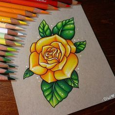 yellow rose drawing drawings draw flowers tattoo flower sketches tattoos pencil desenhos finished coloredpencil roses danielle pikore colored rosas realistic