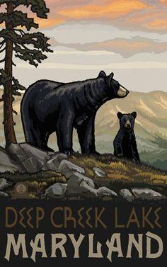 Deep Creek Lake Maryland Black Bear Family - Northwest Art Mall