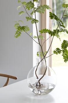 En inredningsblogg om inspiration för inredning & design - Hemtrender Go Green, Glass Vase, Plants, Gardens, Inspiration, Design, Home Decor, Biblical Inspiration, Decoration Home
